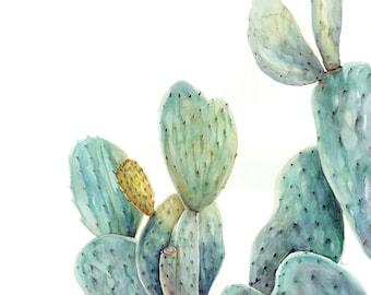Prickly Pear - Art Print
