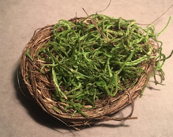 Moss Nest for Mythical Creature Eggs