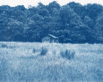 Custom Cyanotype Photographic Print