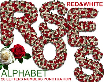 Digital Red and White Roses Alphabet, Wedding Alphabet, Floral Alphabet, Wedding Lettering, Printable Lettering, Instant Download, #47