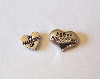 NEW!! Memory Themed Floating Charms, will fit into any brand of floating charm locket neclaces or bracelets, Choose One!!