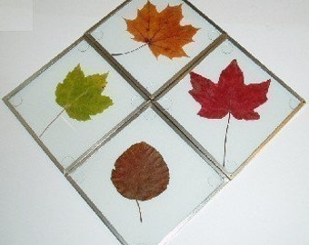 KIT: Glass Coaster Making Kit, SILVER-tone, 4 coasters, use w/your pressed flowers, pictures, leaves, create a garden gift--DIY glass blanks