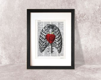 Thorax print-human thorax print-heart print-anatomy print-thorax on book page-Dictionary thorax print-skeleton print-by NATURA PICTA-NPDP070