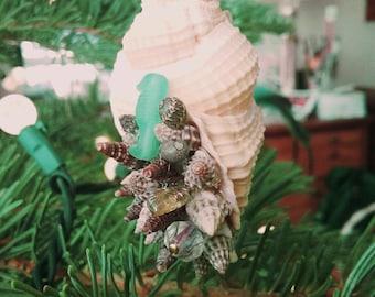 Seashell Ornament Rustic Natural
