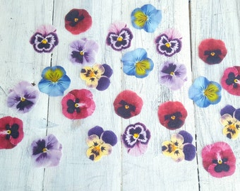 Wafer / Rice Pansy Cupcake or Cookie Toppers! 24 Pre Cut