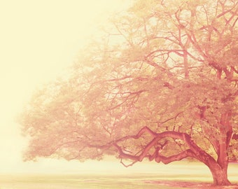 landscape photography, pink tree photograph, dreamy nursery decor, buttercream yellow, that was just a dream, nature photo, Myan Soffia