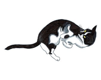 Cat - Collectible Print