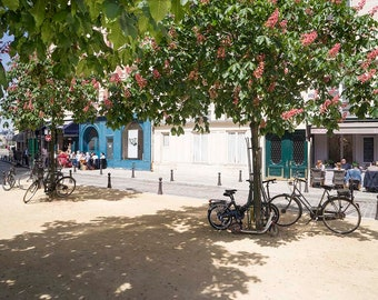 Paris Photography Place Dauphine blooming chestnut trees restaurants lunchtime bicycles locked to trees fine art print