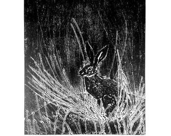 Hare Collagraph Print