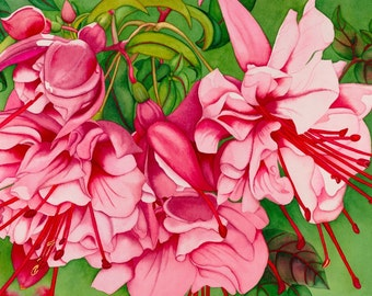 Watercolor painting...PINK LADIES...fuchsia...giclee