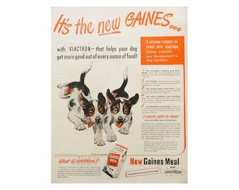 Dog Wall Art - 1940's Gaines Dog Food Ad
