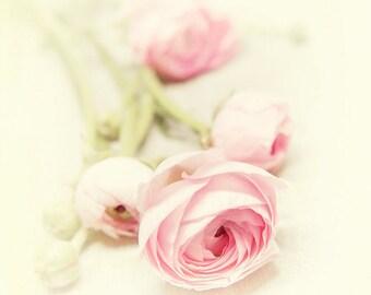 Blush Pink Flowers - Nature Photography - Spring Floral Wall Art - sage green, butter yellow - Feminine Home - Nursery Decor - Botanical Art