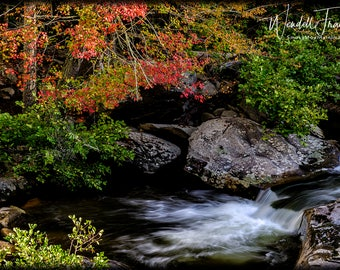 Colorful Stream E240.  Autumn, Fall, Leaves, Colors, Stream, Water, Peaceful, Close-up, River Stones, Smoky Mountains