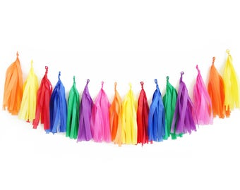 Fiesta Tassel Garland - tissue paper tassel garland   Pinata Banner