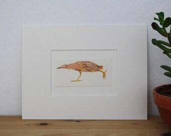 "Original illustration ""Bittern"" - gouache"