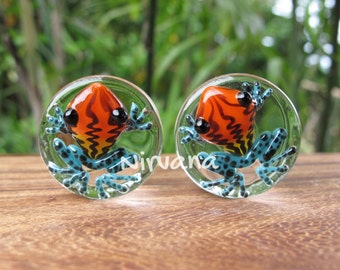 "Sunburst Poison Glass Tree Frog Plugs - One Pair  00g 7/16"" 1/2"" 9/16"" 5/8"" 3/4"" 1"" 9.5 mm 10 mm 12 mm 14 mm 16 mm 18 mm 20 mm 22 mm 25 mm"