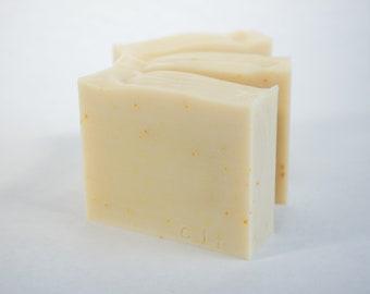 Citrus | All Natural Soap | Essential Oil Soap | Fatty's Soap Co. | Cold Process Soap