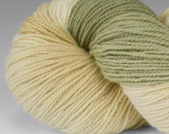 Handpainted Yarn, SW Merino and Nylon, Welcome, Fingering/Sock Wt, 100 g, Beargrass