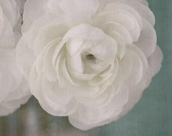 Ranunculus Flower Decor,  Flower Photography, Floral Art Print, White Aqua Wall Art, Romantic Bedroom Decor