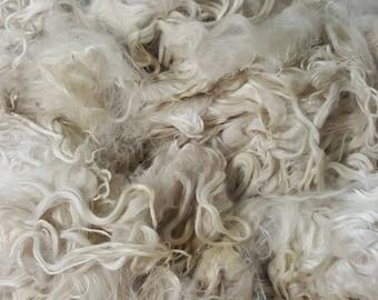 """Suri Alpaca Locks, 7-9"""" Natural White Locks,  Unwashed Locks, Doll Hair, Lock Spinning, Tail Spinning 006"""