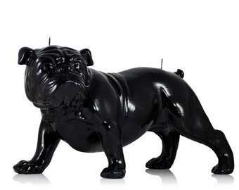 Bulldog Candle Black 210 x 385 mm