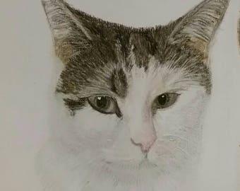 Pet Painting, Custom Pet Portrait, Cat Painting, Wall Art, Dog Portrait, Personalised Portrait, Home Decor, Pet Illustration