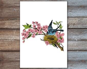 Kirschblüte Kunst, Vogel-Kunstdruck - Vögel-Nest in Kirschblüten Baum, Vogel Wandkunst