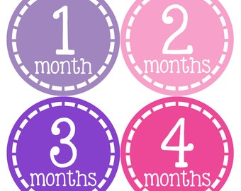 Monthly Baby Stickers Baby Month Stickers Baby Girl Month Stickers Monthly Photo Stickers Monthly Milestone Stickers 454