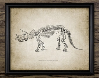 Triceratops Skeleton Anatomy - Ceratopsid Dinosaur - Paleontology - Triceratops Extinct Animal Art - Single Print #2181 - INSTANT DOWNLOAD