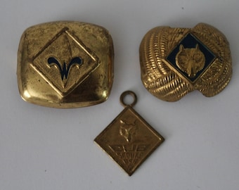 Cub Scout and Webelos Neckerchief Slide (and pendant)