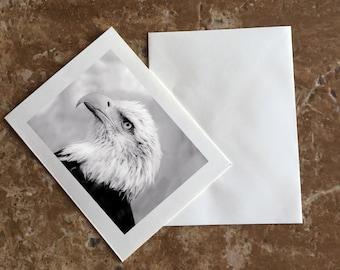 Bald Eagle Blank Notecard