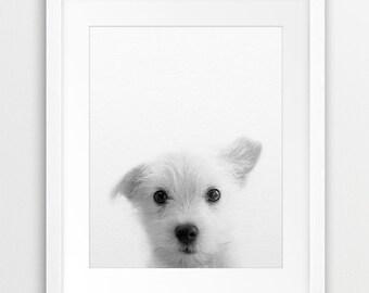 Dog Print, Puppy Photo, Black And White Animal Print, Cute Puppy, Modern Wall Art, Nursery Animal Print, Kids Room Wall Decor, Printable Art