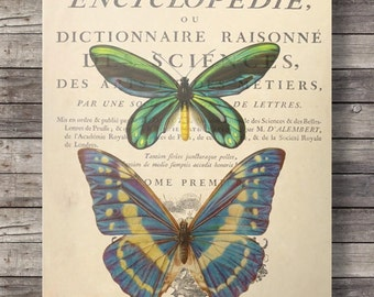 Butterfly Printable art | Vintage textbook butterflies | dictionary book page art print | digital printable art print | dictionary art print