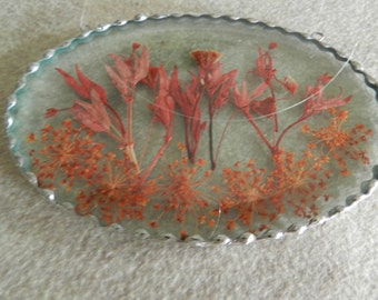 Dried flowers under beveled glass.