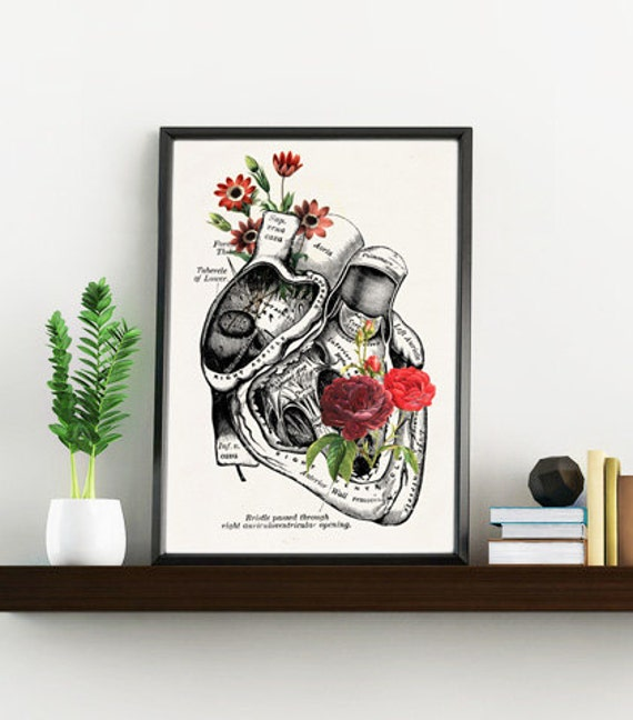 Flowery heart, white art Print- A4 Wall art. Human anatomy print Chic Science prints Human anatomy and flowers SKA080WA4