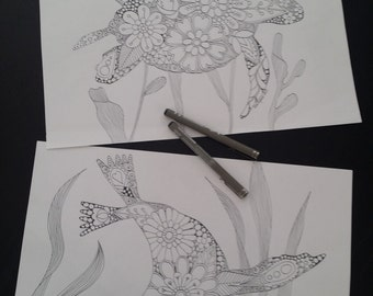 Seal and Turtle, Ocean and Sea  - Adult Colouring Pages