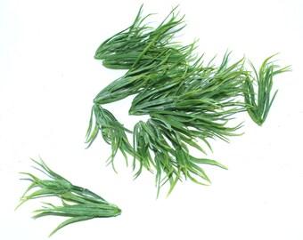 15 Pieces Podocarpus Branches - Faux Succulent - Artificial Succulents
