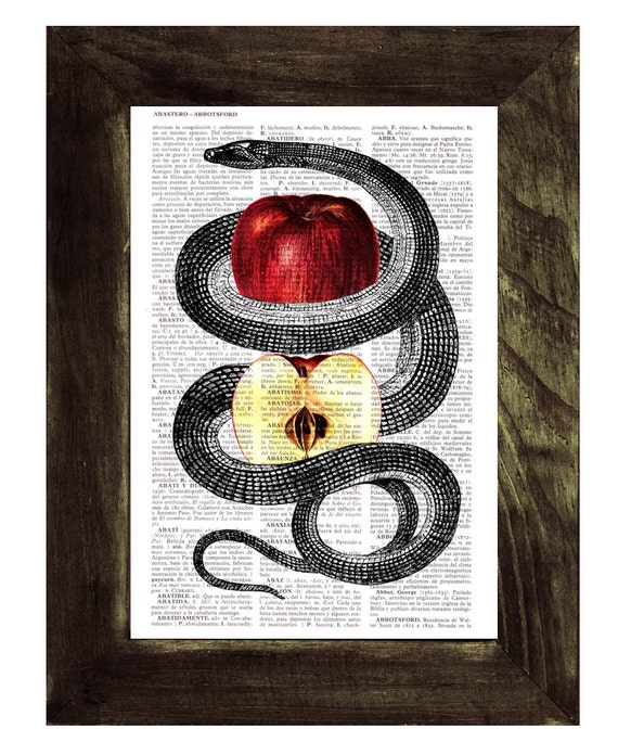 Red Temptation snake and apple, Wall art, Wall decor, Digital prints animal, Giclée, Vintage Book sheet, Nursery wall art, Prints , ANI202