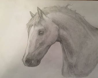 Light sketch of a horse