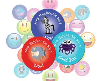 Teacher Stickers Gift Pack Assorted Images