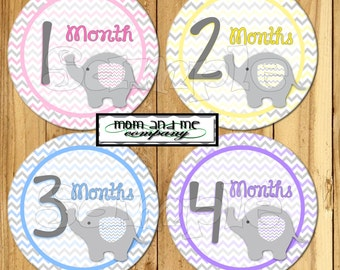 Baby Girl Elephant Monthly Stickers Baby Elephant Month Stickers Baby Girl Shower gift 1- 12 Months infant month stickers Milestone decals