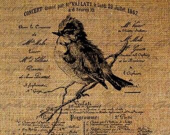 French Script Salon De Musique Bird Birds Digital Image Download Sheet Transfer To Pillows Totes Tea Towels Burlap No. 1581