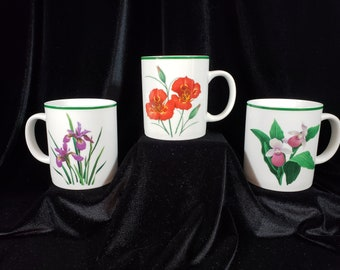 "National Wildlife Federation ""American Wildflowers"" Set of 3 Coffee Mugs 16 oz - Retired"