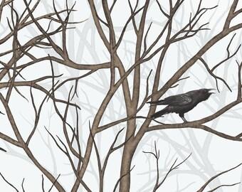 Raven in dark forest