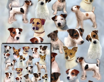 Parson Russell Terrier, Jack Russell, Dog Gift Wrapping Paper with matching Gift Card