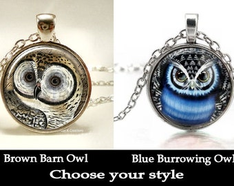 3D Owl Cabochon Pendant Necklace - 2 Flavors to Choose from - Brown Barn Owl or Blue Borrowing Owl