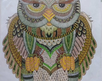 OOAK Original Colored Pencil Drawing of Owl