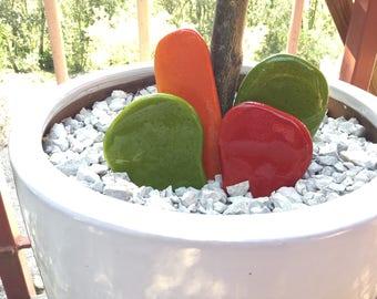 Original Cactus design