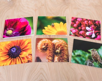 Summer Garden Color Photo Note Cards, Set of 6 Blank A2 Cards Featuring Flowers, Bird and Beetle