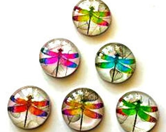 Magnets - Dragonflies - Set of 6 - 1 Inch Domed Glass Circles - Free U.S. Shipping -